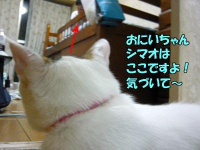 090717-02.jpg