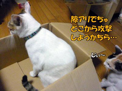 090910-01.jpg