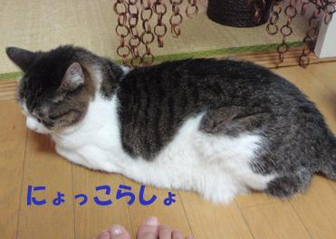 20090701 (11)にょっこらしょ