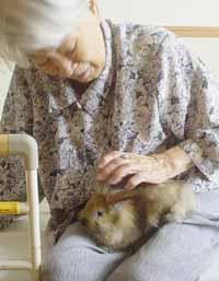 祖母と茶子