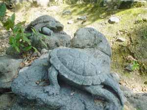 亀山公園の亀?