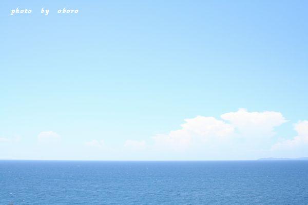 2008 8月13日 天草 下田