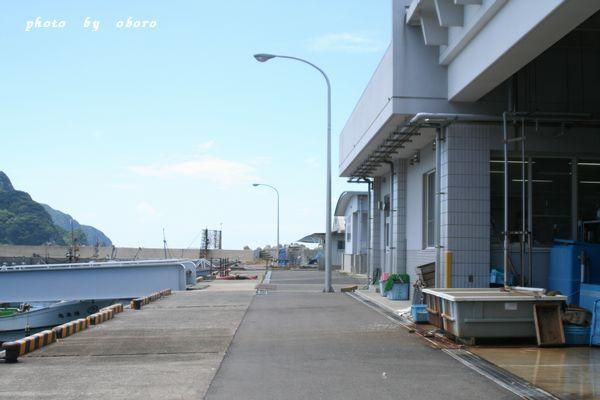 2008 8月13日 天草 牛深漁港