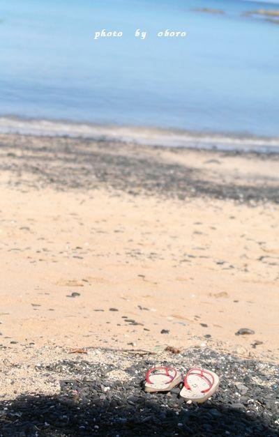 2008 8月13日 天草 茂串海水浴場3