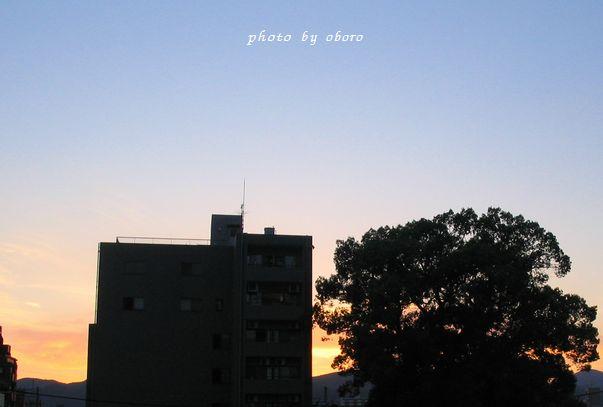 2008 9月03niti