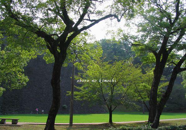 2008 9月08日 007 お城の石垣