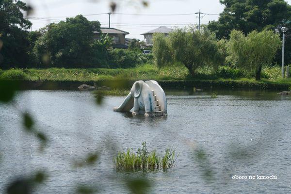 2008 9月11日 江津湖 002