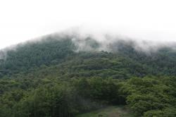 090702高間山 (4)70