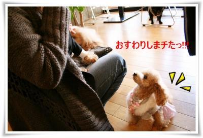20081217_0148.jpg