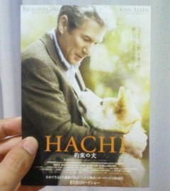 HACHI.jpg