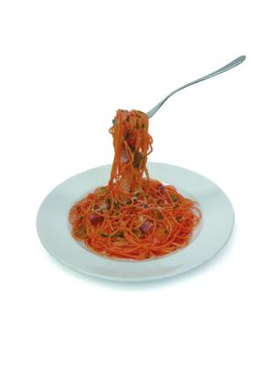 スパゲッティサンプル-1
