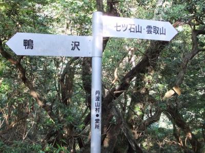 堂所(?)1