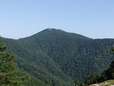 七ッ石山から見た雲取山