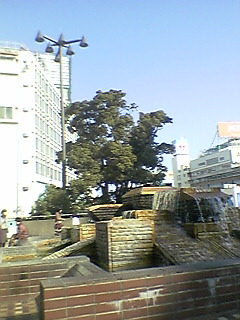 20060311150416