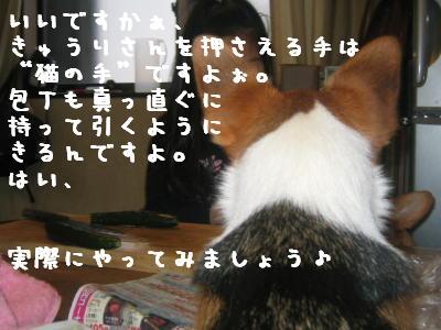 20060414184801.jpg
