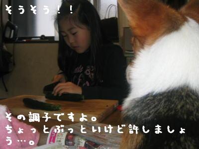 20060414184838.jpg