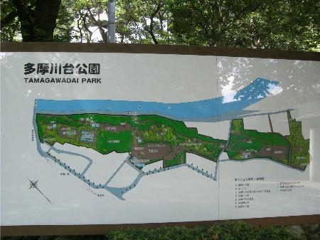 1多摩川台公園