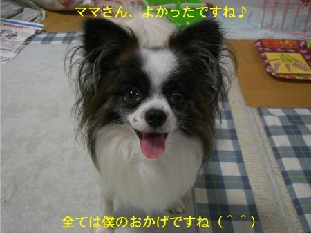 6何故に(--)