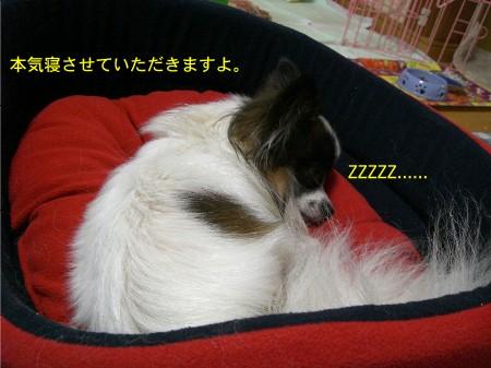 11ごくろうさん(^^)