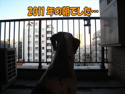 20110102R0013592.jpg
