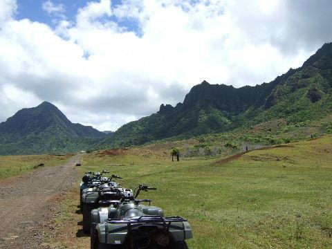 hawaii0115.jpg