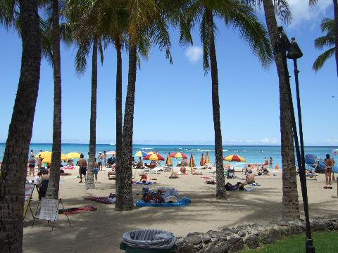 hawaii0129.jpg