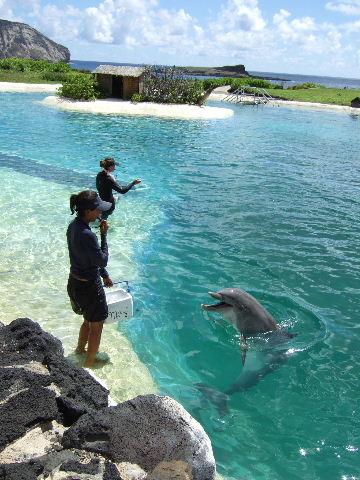 hawaii0159.jpg