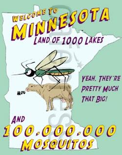 mnmosquito.jpg