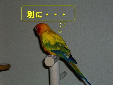 100_0588.jpg