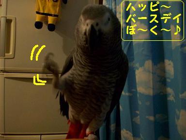 100_0605.jpg