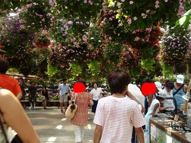 掛川花鳥園4