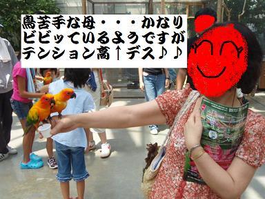 掛川花鳥園7