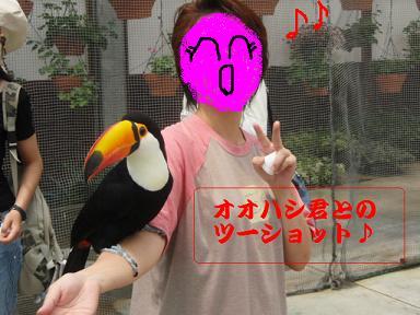 掛川花鳥園8