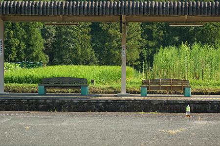 愛知県民の森2-1