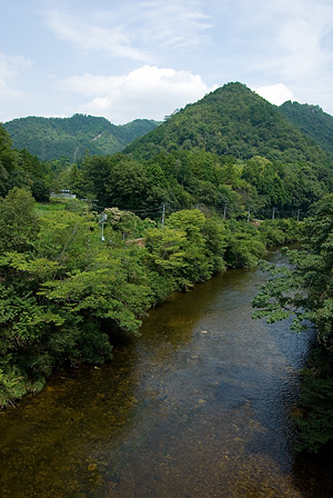 愛知県民の森2-4