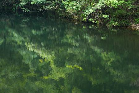 愛知県民の森3-1