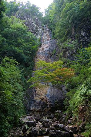 愛知県民の森3-11