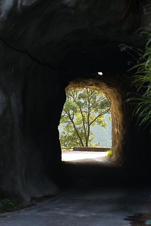 愛知県民の森5-2