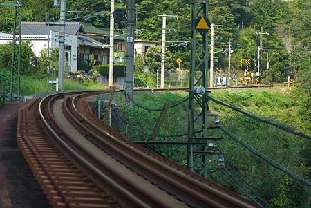愛知県民の森5-3