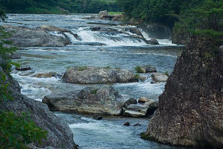 愛知県民の森5-7