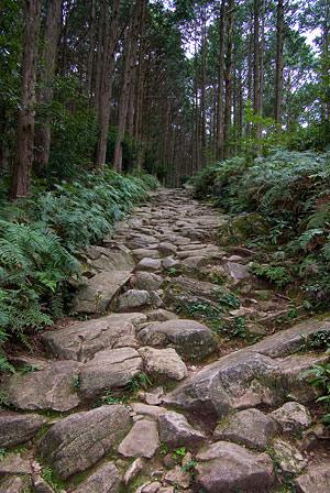 熊野古道2-10
