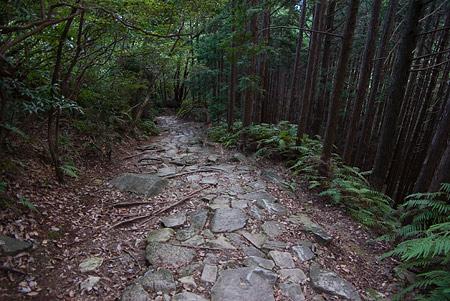 熊野古道4-7