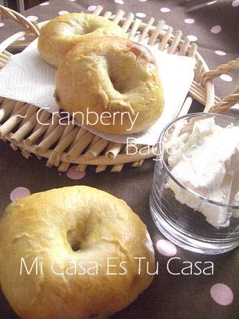 Bagel - Cranberry copy