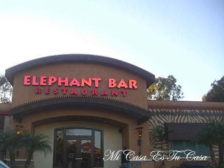 Elephant Bar copy