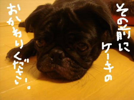 snap_omame89_200972183214.jpg