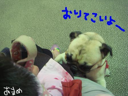 snap_omame89_200985231736.jpg