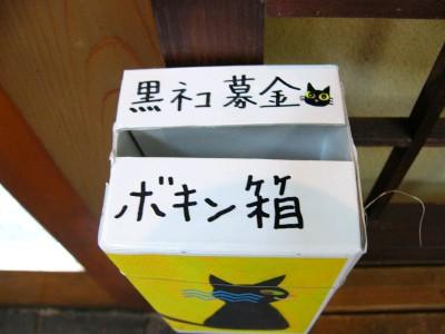 黒猫募金3