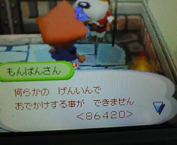 NEC_306.jpg
