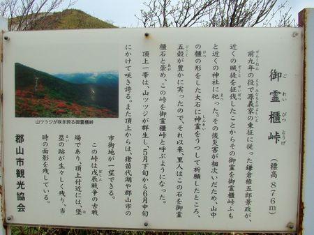 hitaitoriyama02