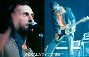 MEXCALのライブでのNicola